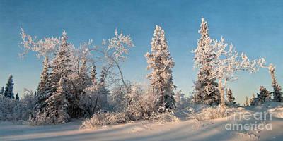 Snowscape Photograph - Wintery by Priska Wettstein
