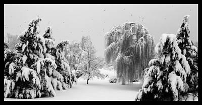 David E Lester Photograph - Wintery Scenes 1 by David Lester