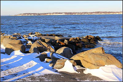 Wintry Day At The Bay Print by Dora Sofia Caputo Photographic Art and Design