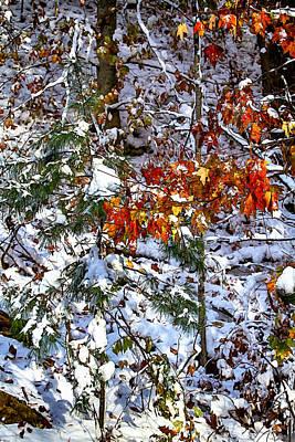 Appalachian Photograph - Wintry Mix by John Haldane