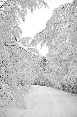 Wintry Road Print by Conny Sjostrom