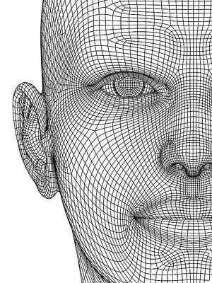 Human Head Photograph - Wireframe Head by Alfred Pasieka