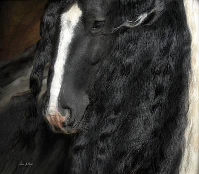 Black And White Horses Digital Art - Wisdom by Fran J Scott