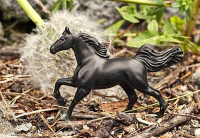 Dandelion Digital Art - Wishing Horse by Jeff  Gettis