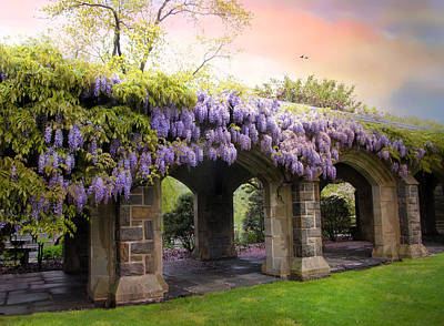 Wisteria In May Print by Jessica Jenney