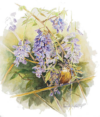 Watercolor Wisteria Painting - Wisteria With Wren Study by Donna Grasso