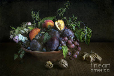 With Plums Print by Elena Nosyreva