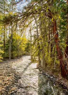 Wolf Creek Afternoon Light Print by Omaste Witkowski