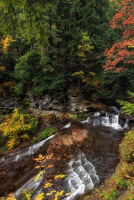 Wolf Creek Photograph - Wolf Creek Falls by Mark Papke