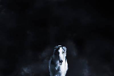Wolf Like Sight Hound Print by Christian Lagereek