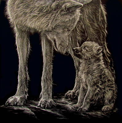 Scratchboard Painting - Wolf Talk by Lesley Barrett