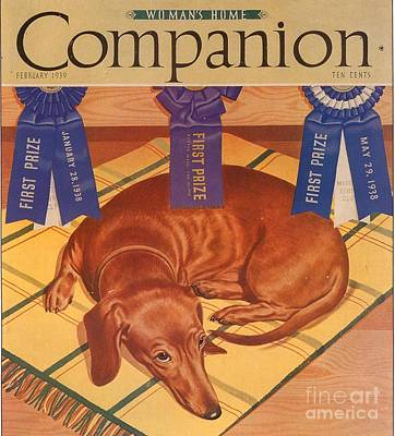 Nineteen-thirties Drawing - Womans Home Companion 1930s Usa Dogs by The Advertising Archives