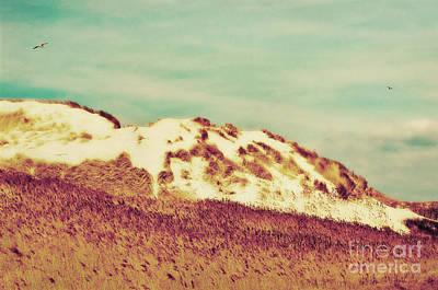 Flying Seagull Photograph - Wonderful Island Retro by Angela Doelling AD DESIGN Photo and PhotoArt