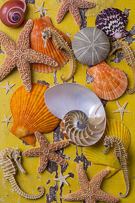 Wonderful Sea Life Print by Garry Gay