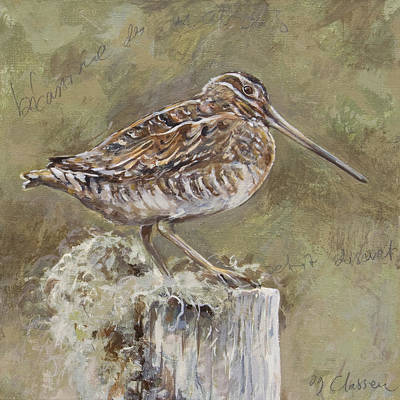 Woodcock Painting - Woodcock  by Anke Classen