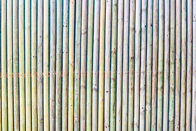 Bamboo Fence Photograph - Wooden Poles by Tom Gowanlock