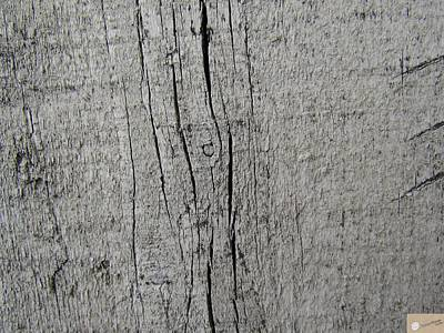 Wooden Scars Original by Shreyasvi Natraj