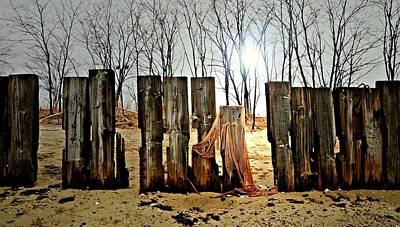 Netting Photograph - Woodhenge by Diana Angstadt