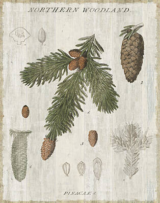 Pine Needles Painting - Woodland Chart V by Sue Schlabach