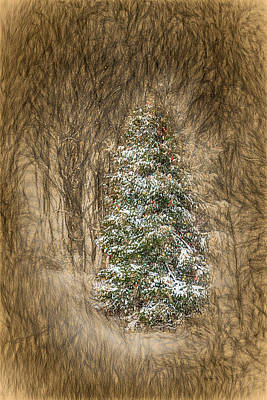 Woodland Christmas Print by John Haldane