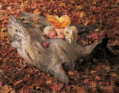 Fall Photograph - Woodland Fairy by Anne Geddes