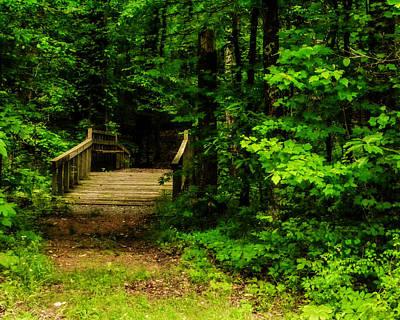 Woodland Foot Bridge Print by Jon Woodhams