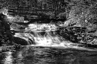 Woodland Stream Print by Bill Cannon