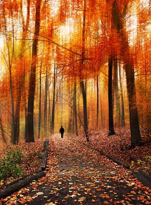 Woodland Walk Print by Jessica Jenney