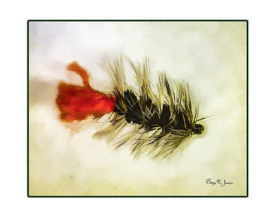 Fly Fishing - Woolly Bugger Print by Barry Jones