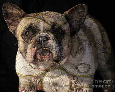 Bulldog Art Digital Art - World Domination by Judy Wood