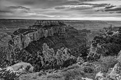 Painted Desert Photograph - Wotan's Throne North Rim Grand Canyon National Park - Arizona by Silvio Ligutti