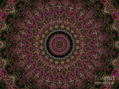 R. Mclellan Photograph - Woven Kaleidoscope by R McLellan