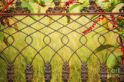 Wrought Iron With Red And Green Print by Kathleen K Parker