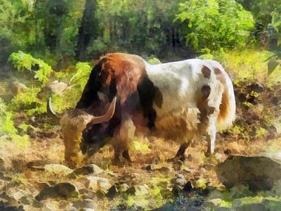Farm Animals Photograph - Yak Having A Snack by Susan Savad