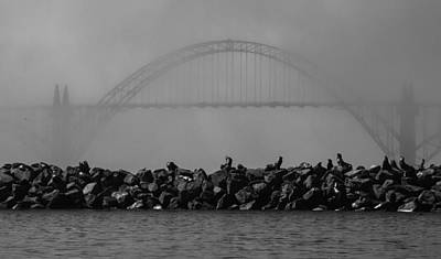 Sea Lion Photograph - Yaquina Bay Bridge Under Fog by Mark Kiver