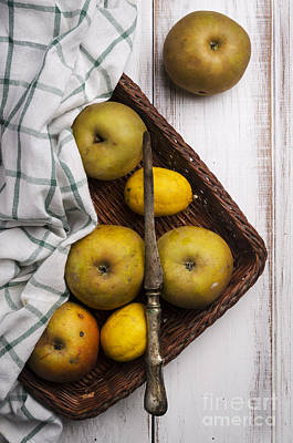 Yellow Apples Print by Jelena Jovanovic