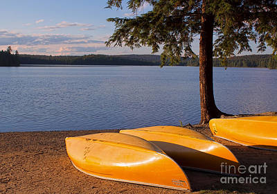 Canoe Photograph - Yellow Canoes In Late Afternoon by Barbara McMahon