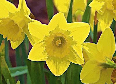Yellow Flower Iris Print by David Letts