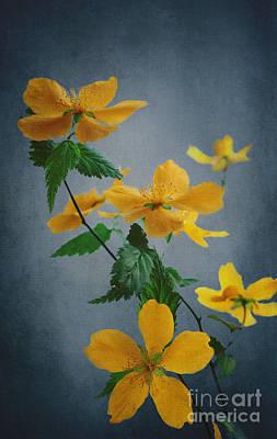 Yellow Flowers Print by Jelena Jovanovic