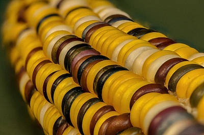 Autumn Photograph - Yellow Indian Corn by Randy Walton
