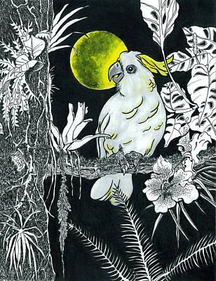 Cockatoo Drawing - Yellow Moon  by Richard Brooks