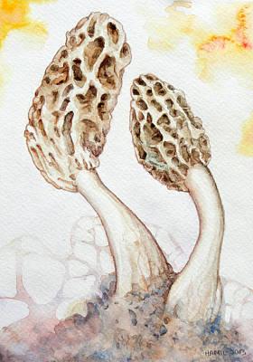 Morel Painting - Yellow Morel Mushrooms by Alison Hamil