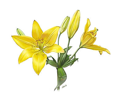 Oriental Tiger Digital Art - Yellow Oriental Lily by Artellus Artworks