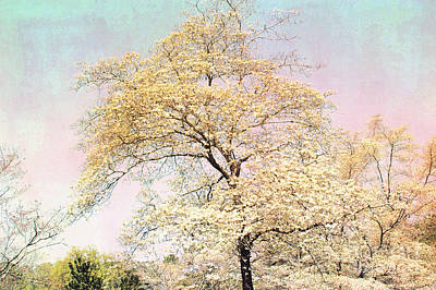 Yellow Pink Nature Trees - Dreamy Fantasy Surreal Yellow Pink Golden Trees Nature Landscape Print by Kathy Fornal