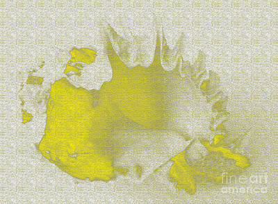 Abstract Forms Digital Art - Yellow Shell by Carol Lynch