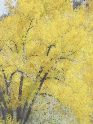 Yellow Trees Print by Ann Powell