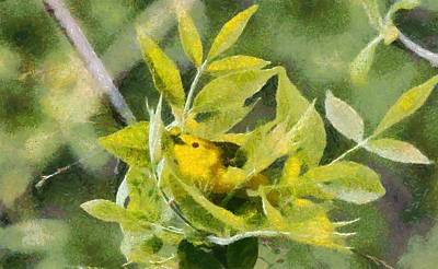 Warbler Painting - Yellow Warbler Painting by Dan Sproul