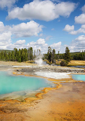 Yellowstone National Park, Wyoming, Usa Print by Janet Muir