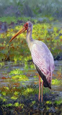 Stork Painting - Yelow-billed Stork by David Stribbling