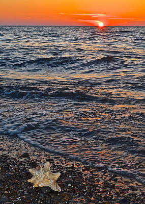 Loud Photograph - Yes I Can Hear The Ocean by Frozen in Time Fine Art Photography